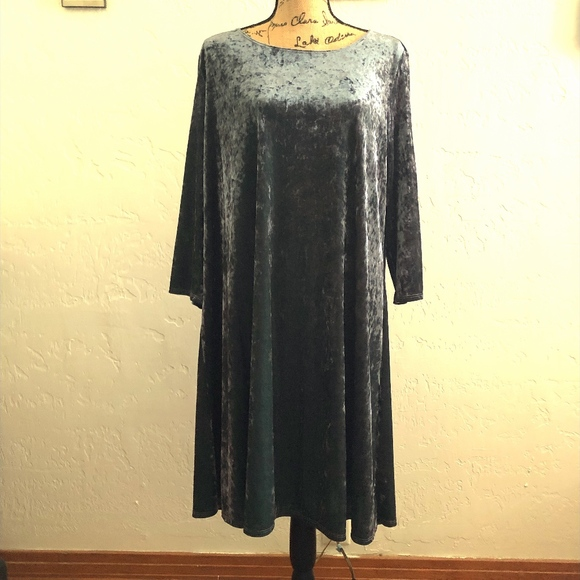 LBisse Dresses & Skirts - LBisse Velour long sleeve dress, size 2X
